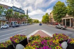 哈佛广场在剑桥, MA,美国 库存图片