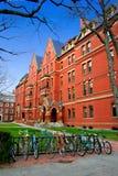 哈佛方形美国 库存照片