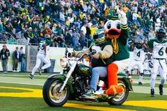 哈利在Autzen体育场的摩托车入口 免版税库存照片