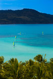 哈密尔顿岛,昆士兰,澳大利亚 免版税库存照片