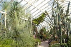 哈密尔顿维多利亚女王时代的花园 库存图片