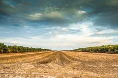 哈尔科夫沙漠看法在秋天 库存图片