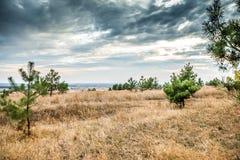 哈尔科夫沙漠风景看法在乌克兰 免版税库存照片