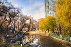 哈尔滨-中国旅行- 11月 免版税库存照片