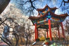 哈尔滨-中国旅行- 11月 库存照片