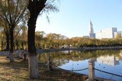 哈尔滨师范大学` s湖边湖边平地 免版税库存图片