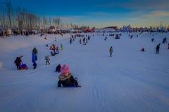 哈尔滨,中国- 2017年2月9日:哈尔滨国际冰和雪雕节日是一个每年冬天节日那 库存照片