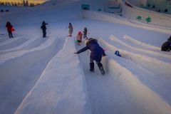 哈尔滨,中国- 2017年2月9日:哈尔滨国际冰和雪雕节日是一个每年冬天节日那 免版税图库摄影