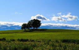 哈德森与农场土地和草甸的谷地平线云彩的填装了夏日 免版税图库摄影