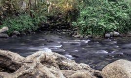 哈斯巴尼河snir河和保留在北部以色列 库存照片