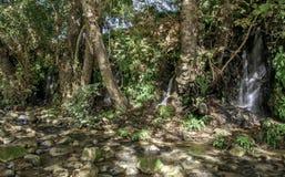 哈斯巴尼河snir河和保留在北部以色列 库存图片