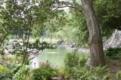 哈林圣尼古拉斯公园-纽约- Paysage和自然 免版税库存照片