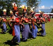 哈根山地方部落节日的参加者- 17 08 2014年,哈根山巴布亚新几内亚 免版税库存照片