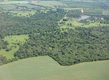 哈特菲尔德森林鸟瞰图  图库摄影