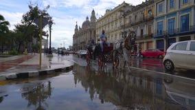 哈瓦那、古巴- 2018年5月13日-人们、马支架和老出租汽车汽车在街道上在4k 股票视频