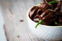 哈瓦那人巧克力辣椒 免版税库存图片