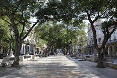哈瓦那旧城建筑学在古巴 图库摄影