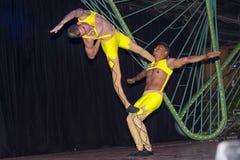 哈瓦那,古巴- 2018年1月04日:执行在Tropicana的舞蹈家 库存图片