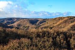 哈茨山国家公园在德国冬天 免版税库存图片