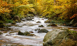哈茨山的河Ilse 免版税库存图片