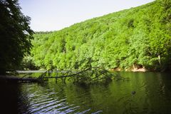 哈莫里绿色湖在米什科尔茨,匈牙利附近的Lillafure 与盖山的阳光的春天风景 太阳道路 免版税库存照片