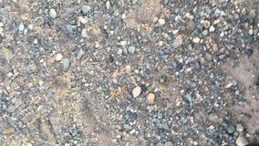 哈萨克人老鹰与寻找对与的野兔在巴彦Olgii aimag山的马的猎人berkutchi鹫  股票视频