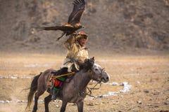 哈萨克人老鹰猎人传统衣物,当寻找对拿着在他的胳膊的野兔一只鹫在沙漠山时 免版税图库摄影