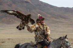 哈萨克人老鹰猎人传统衣物,当寻找对拿着在他的胳膊的野兔一只鹫在沙漠山时 图库摄影