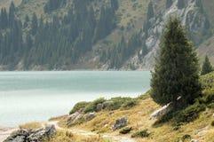 哈萨克斯坦的本质 Almaty湖 库存图片