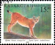哈萨克斯坦-大约1998年:在哈萨克斯坦打印的邮政邮票显示天猫座 哈萨克斯坦动物区系  免版税库存图片