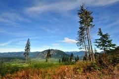 响尾蛇山,本顿县, WA,美国:从响尾蛇山的一幅全景-在stat的盛大远景 免版税库存图片