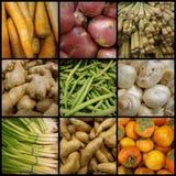 响铃拼贴画玉米黄瓜包括其他胡椒蕃茄蔬菜 库存照片