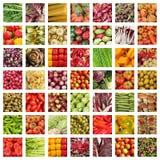 响铃拼贴画玉米黄瓜包括其他胡椒蕃茄蔬菜 免版税库存图片