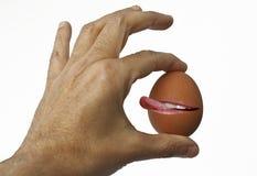 击响嘴唇的鸡蛋 库存照片