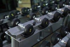 哑铃在健身健身房traning锻炼的重量设置了 免版税库存照片