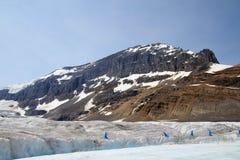 哥伦比亚冰川 图库摄影