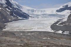 哥伦比亚冰雪原 免版税库存照片
