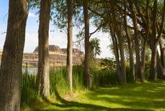 哥伦比亚山脉国家公园 免版税库存图片