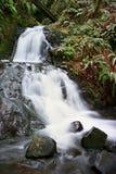哥伦比亚峡谷瀑布 库存照片