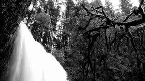 哥伦比亚峡谷瀑布 免版税库存照片