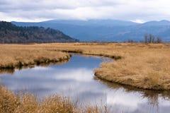 哥伦比亚峡谷附庸国刷子大草原山天空 免版税图库摄影