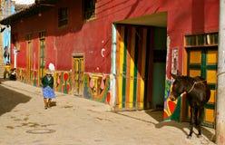 哥伦比亚殖民地寿命老街道城镇 免版税库存图片