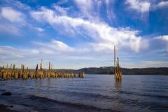 哥伦比亚河全景与依然是黏附在外面的老码头 免版税库存图片