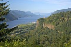 哥伦比亚河峡谷和周围的森林 库存图片