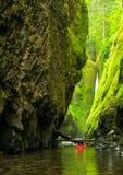 哥伦比亚河峡谷 库存图片