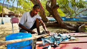 哥伦比亚的渔夫 库存照片