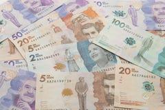 哥伦比亚的货币 库存图片