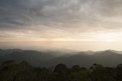 哥伦比亚-雨林在内华达山脉de Santa Marta 库存图片