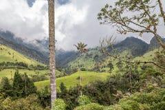 哥伦比亚` s Cocora谷和棕榈树 免版税库存照片