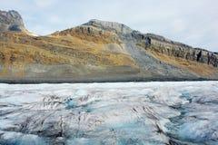 哥伦比亚icefield 库存照片